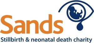 sands logo 144+280 new